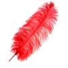 "Ostrich Wing Feathers 18-24"" Premium Quality 1/2 Lb Red"